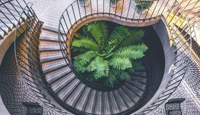 Quando l'architettura è in linea con la sostenibilità ambientale